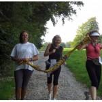 Frauenlauf_2010 (10)
