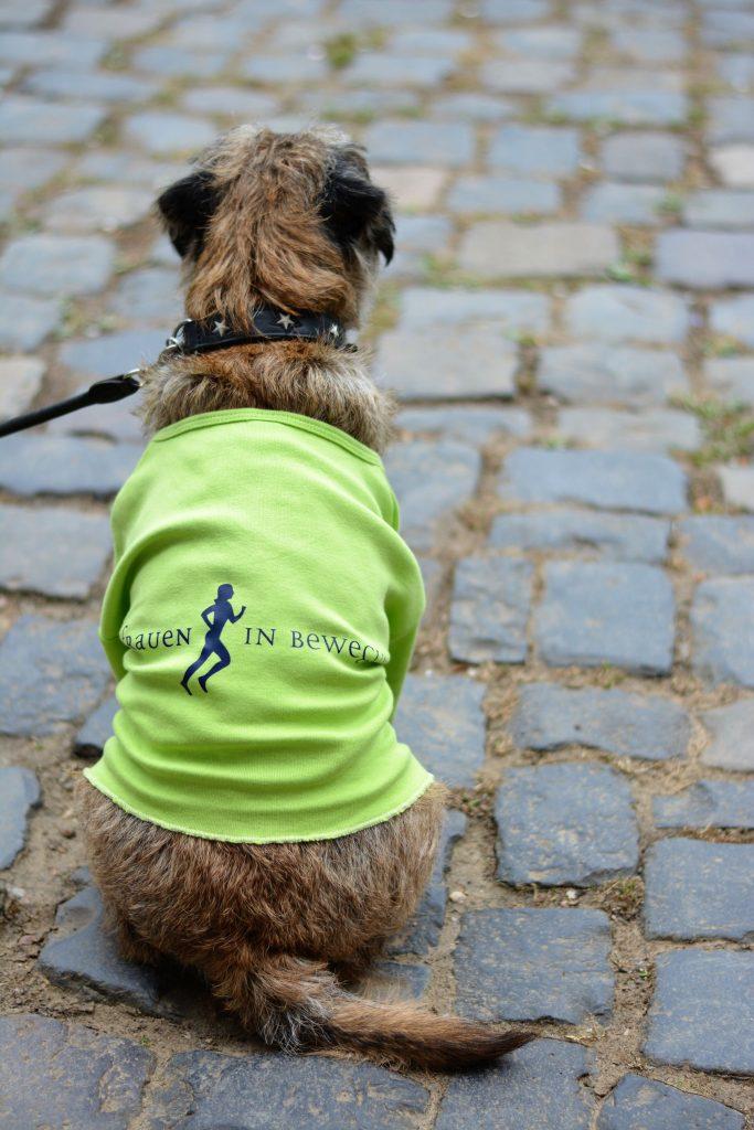 Hund-im-FIB-Shirt-1